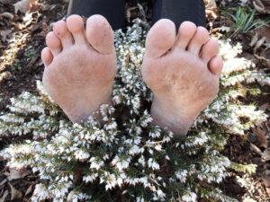 fötter i en ljung